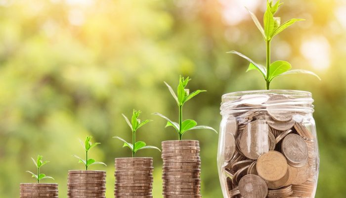Can Tier 1 Investors invest in Start-ups?